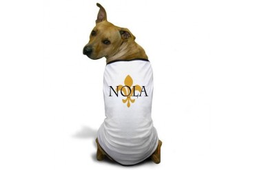 NOLA Cool Dog T-Shirt by CafePress
