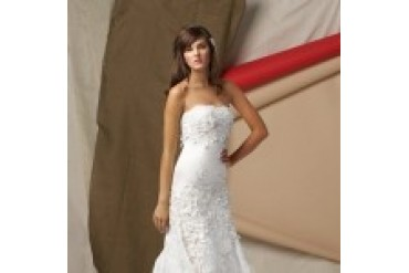 Watters and Watters Wedding Dresses - Style Torreon 4041B