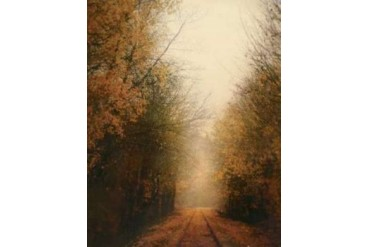 Road of Mysteries I Poster Print by Amy Melious (22 x 28)