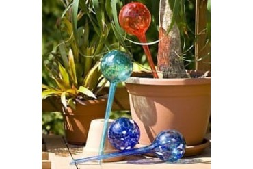 Aqua Plant Watering Globes Large - 4pc Deluxe Set
