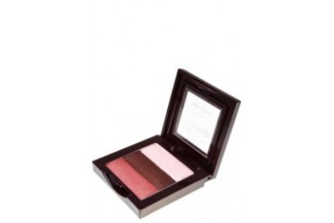 4U2 ENVY ETERNITY 3 COLOR EYESHADOW - BLOSSOM / 5gm