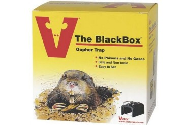12 Pack Woodstream Victor 0625 Gopher Trap Blackbox