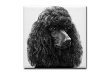 Black or Chocolate Poodle Pets Tile Coaster by CafePress