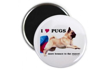 Pug Bounce Pets Magnet by CafePress