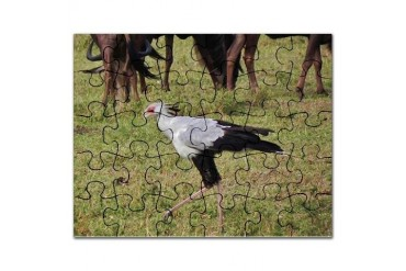 secretary bird kenya collection Animal Puzzle by CafePress