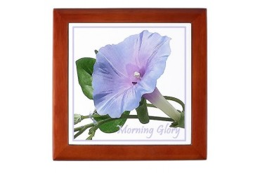 Morning Glory Flowers Keepsake Box by CafePress