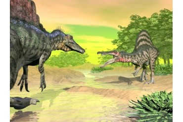 Confrontation between two Spinosaurus dinosaurs.