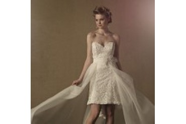 Alfred Angelo Overskirt - Style 2463