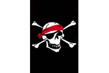 Pirate Skull and Crossbones Decorative Garden Flag Banner