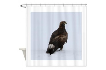 Golden Eagle Bird Shower Curtain by CafePress